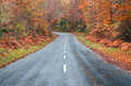 Road in the forest in autumn fall colors trees Stock Images