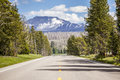 Road through forest straight to the mountains yellowstone national park Royalty Free Stock Images