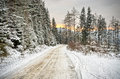 Road in forest during winter Stock Photos