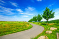 Road in green field Royalty Free Stock Photos