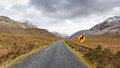 Road through Ireland Royalty Free Stock Photo