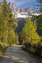 Road in the Italian Alps Royalty Free Stock Photos