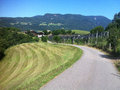 Road in the Italian Alps Royalty Free Stock Photo