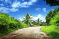 Road in jungle of la digue island seychelles Royalty Free Stock Images