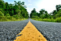 Road in Khao Yai National Park Royalty Free Stock Photo