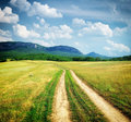 Road lane in mountain meadow. Royalty Free Stock Photo