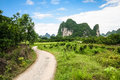 Road leading to limestone mountain in china see my other works portfolio Stock Photography