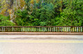 Road and lush green forest concrete railing of historic highway with a beautiful rainforest passing through the columbia river Royalty Free Stock Photography