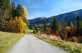 Road in mala fatra national park autumn view of the little as well as rozsutec nature reserve vratna valley Royalty Free Stock Photo