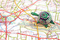 Road map with toy turtle