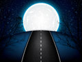 Road in the moonlight