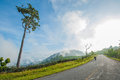 Road on the mountine in thailand Royalty Free Stock Image