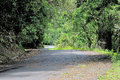Road In The Oribi Gorge Nature...