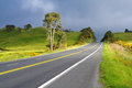 Road With Painted Double Yellow Line, New Zealand Royalty Free Stock Photos
