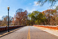 Road in Piedmont Park, Atlanta, USA Royalty Free Stock Photo