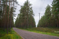 Road and power lines cut through wooded area Royalty Free Stock Photo