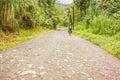 Road in rain forest in El Fosforo in Costa Rica. Royalty Free Stock Photo