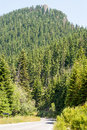The road in the Rhodopes, Bulgaria Royalty Free Stock Photo