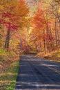 Road on the Ridge Royalty Free Stock Photo