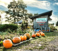 Road side vegetable stand roadside and pumpkin Stock Photos
