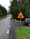 Road sign beware cat near crossroad in sweden Royalty Free Stock Photography