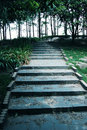 Road steps Royalty Free Stock Photo