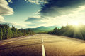 Road in summer forest asphalt beautiful Stock Image