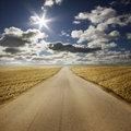 Road in summery countryside Royalty Free Stock Photo
