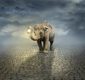 On the road surreal artistic illustration with an elephant carrying a lemur its back and a lantern with its trunk Stock Photography