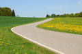 Road thru green meadow in bavaria germany Royalty Free Stock Photos