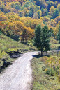 Road to colorful autumn country hill with forest in Royalty Free Stock Images