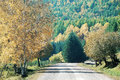 Road to colorful autumn country hill with forest in Stock Photo