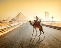 Picture : Road to Giza   day
