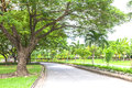 Road to the green garden at bangkok thailand Stock Photos
