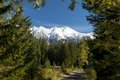 Road to Snowy Mountains, Cervene vrchy, Western Carpathians, Slovakia Royalty Free Stock Photo