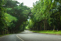 Road and tree Royalty Free Stock Photo