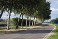 Road and trees asphalt with on one side Stock Photo