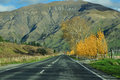Road trip in New Zealand Royalty Free Stock Photo