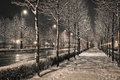 Road in the winter night budapest andrásy Royalty Free Stock Photo