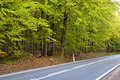 Road through the woods long paved maintained by deciduous forest Royalty Free Stock Photography