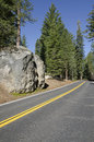 Road in Yosemite National Park Stock Image