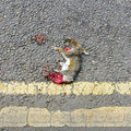 Roadkill carcass of a grey squirrel nd july sciurus carolinensis kirkby in ashfield nottinghamshire england Stock Image
