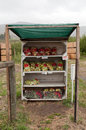 Roadside apple stall with honesty box a next to an orchard selling bags of freshly picked apples Stock Photography
