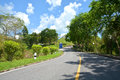 Roadway with tree and blue sky Royalty Free Stock Image