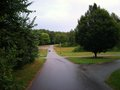 Roadway with trees and grass Stock Images