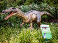 Roaring Baryonyx standing in tall grass display model in Perth Z Royalty Free Stock Photo
