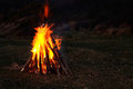 Roaring bonfire real wood collected beach full blaze dark background copy Royalty Free Stock Photos