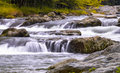 Roaring Fork in the Smokies Royalty Free Stock Photo