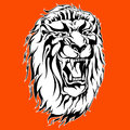 Roaring lion tattoo black and white on an orange background Stock Images