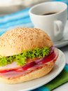 Roast Beef Sandwich Royalty Free Stock Photography